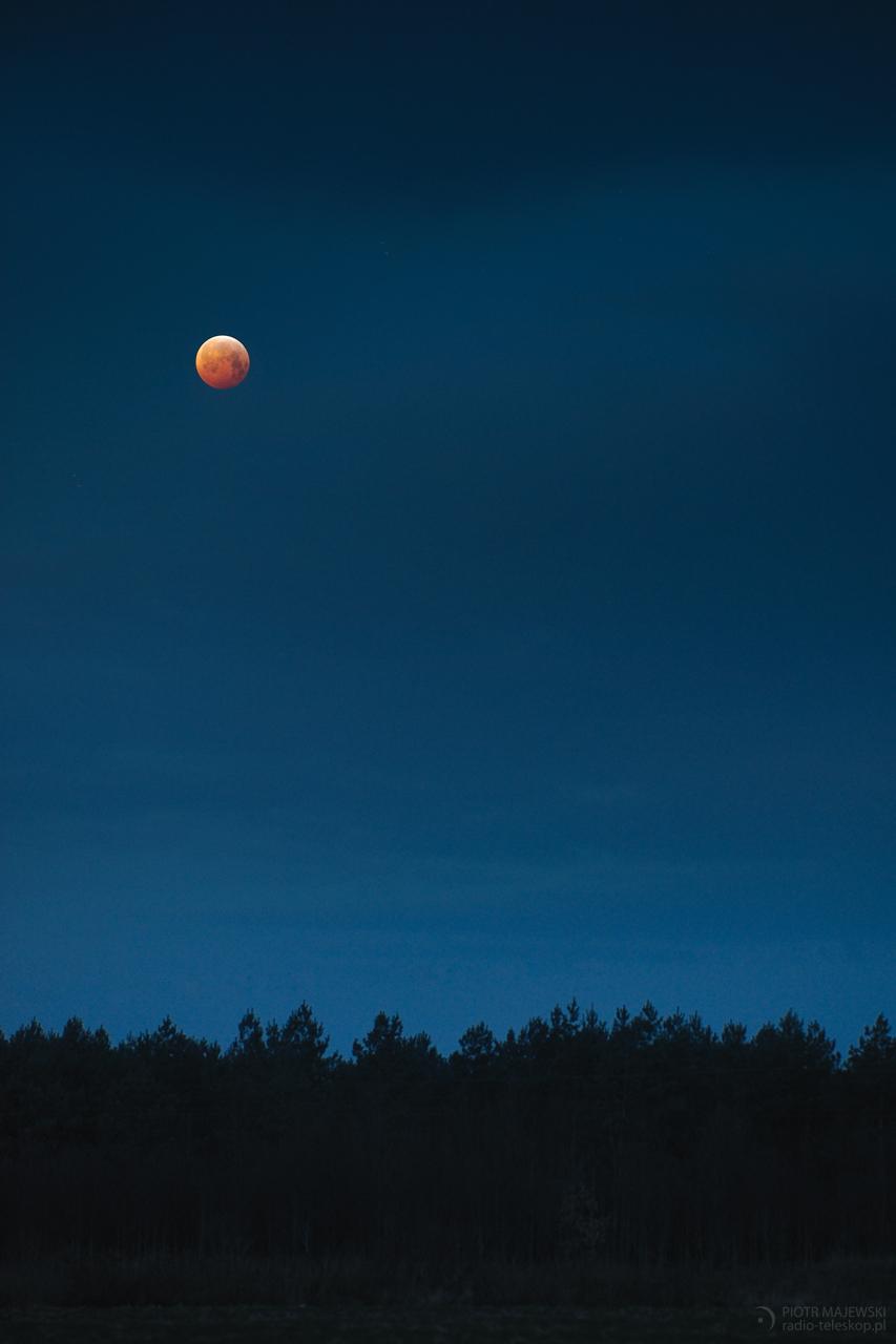 BŁĘKITNA KREW. Całkowite zaćmienie Księżyca.
