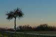 TREE-IO. Merkury, Wenus i Neptun 07 lutego 2020 roku.