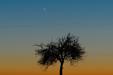 SAMOTNI. Merkury nad Pomorzem 07 lutego 2020 roku.